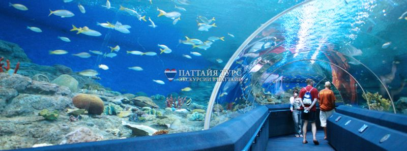 Океанариум «Underwater World Pattaya»